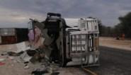 """Vijf Belgen betrokken bij crash met toeristenbus komen naar huis, overleden slachtoffer blijft in Namibië: """"Autopsie al meermaals uitgesteld"""""""