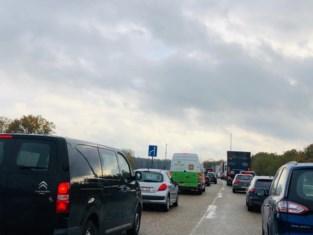 Vijf kilometer, één uur aanschuiven: vrachtwagen in panne zorgt voor verkeerschaos