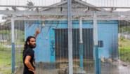 """Na zes jaar in de Australische 'asielgevangenis' legt vluchteling de horror bloot: """"Een relaas van honger, afstraffingen en moord"""""""