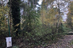 Gemeente koopt bospad Pierloos op als fiets- en wandelweg