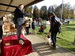 FOTO. Hondenwijding op de Valk
