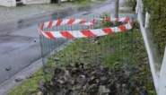 Proefproject met bladkorven in De Haan