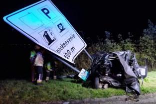 Twingo wordt op snelweg aangereden door zware pick-up: 22-jarige man komt om
