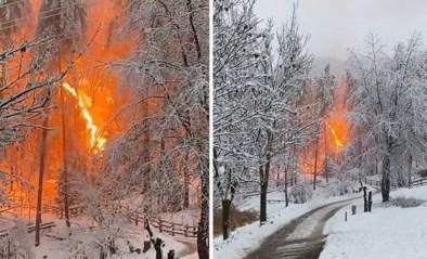 Ongezien spectaculaire beelden: elektriciteitsleiding vliegt in brand in besneeuwd bos