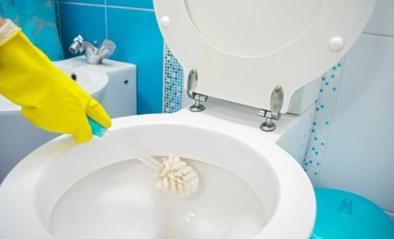 Het einde van de wc-borstel? Wetenschappers ontwikkelen wc-pot die (bijna) niet vuil wordt
