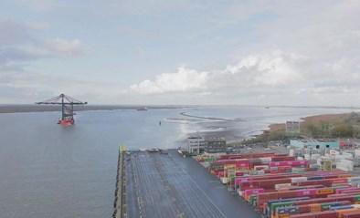 VIDEO. Indrukwekkend: timelapse toont aankomst grootste kranen ter wereld in in Antwerpse haven