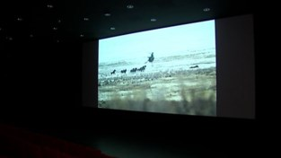 VIDEO. Mama's (en hun baby's) pikken filmpje mee tijdens cinema ZED Poussette