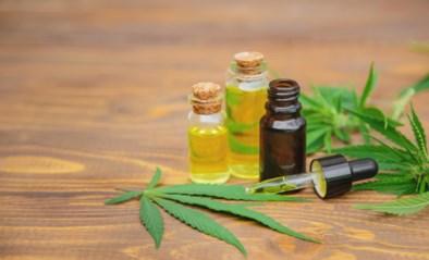 U hallucineert niet: ook dit is cannabis