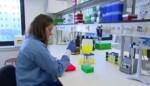 VIDEO. Tiense doctoraatsstudente wint 'For Women in Science' en krijgt beurs van 60.000 euro