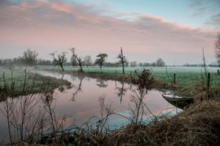 """Natuurfotograaf publiceert fotoboek over natuurpracht van Gent: """"Zijn die foto's echt in onze stad gemaakt?"""""""