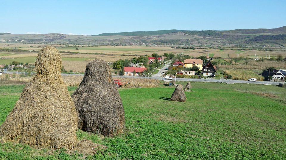 Roemeense wijn bij kaas- en vleesbuffet