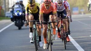 """Ook Van Aert, Van Avermaet en Stuyven trekken voor de klassiekers op hoogtestage: """"Een risico, maar het nemen waard"""""""