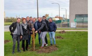 Organisator Aarova Short Rally plantte een boom voor elke deelnemer