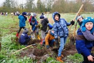 Brrr …. Deze dappere kinderen planten vijfhonderd (!) bomen in vrieskou