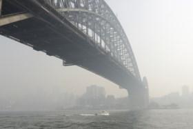 Bosbranden Australië: zwaarste waterbesparing in tien jaar, gevaar voor astma en Belgische crowdfunding