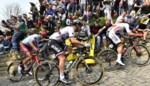"""Verdwijnt de Muur weer van het parcours van de Ronde? Geraardsbergen dreigt: """"Niet besparen op armoede om de koers te houden"""""""