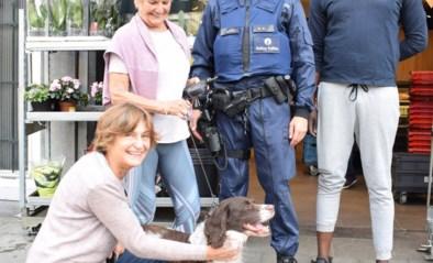 Ze had alle hoop opgegeven om haar hond nog terug te zien, tot Francine na bijna 6 jaar verlossend nieuws kreeg
