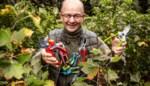 10 tuinscharen getest: onze tuinexpert merkt dat goedkoop ook goed kan zijn