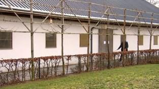 VIDEO. Onder meer Leuven, Aarschot en Diest willen samen een nieuw dierenasiel openen