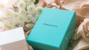 LVMH telt meer dan 14 miljard euro neer voor bekende juwelier Tiffany & Co