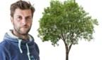 Is het verstandig om een es aan te planten in jouw tuin? Dit is het advies van Bartel Van Riet