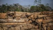 Planeet stevent af op wereldwijde klimaatramp, waarschuwen wetenschappers