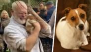 """Man barst in tranen uit wanneer hij na drie dagen zoeken zijn hond terugvindt: """"Ik begon stilaan de hoop te verliezen"""""""