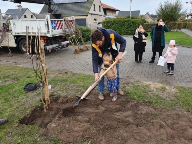Middelkerkse kinderen planten hun 'geboortebos'