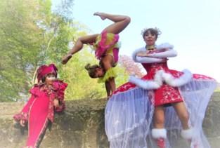 """'Belgium's Got Talent'-finaliste leert kunstjes bij Circalissa: """"We maakten van haar een showartieste"""""""