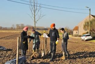 Sikhgemeenschap houdt plantdag voor 'Moeder Aarde' aan de Rummense Oppenstraat