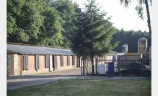 Kippenboer en Brugs veevoederbedrijf veroordeeld voor dodelijk ongeval van Eddy Himpens (60)