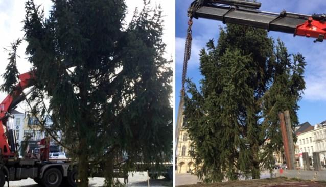"""""""Te lelijk"""", dus stuurt stad grote kerstboom meteen terug naar afzender"""