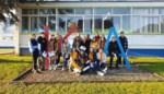 Atheneumleerlingen hebben uitwisselingsproject met school uit Florenville