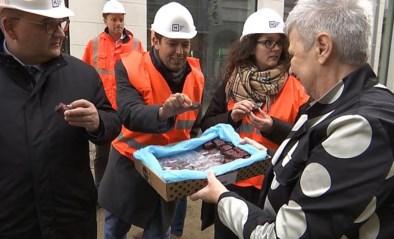 VIDEO. Burgemeester bezoekt stadswerven in Hasselt