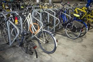 Zoals fietsenparking er nu bijligt, wil schepen er zelf niet voor betalen