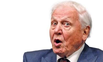 David Attenborough draait documentaire over ... zichzelf