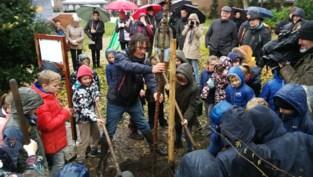 Behaag onze Kempen plant na 25 jaar de miljoenste boom