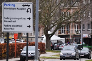 Aanduiding parkings is primeur voor Hamme