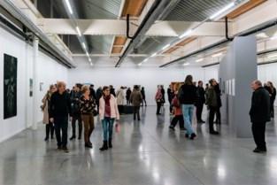 Expo 'Ronse Drawing Prize' toont tekenkunst op zijn best