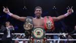 Anthony Joshua heeft revanche beet tegen Ruiz en pakt wereldtitel bij 4 (!) boksbonden