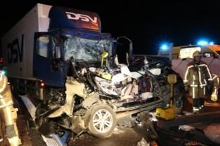 Trucker veroordeeld tot dertig maanden voor dood paardenfokker
