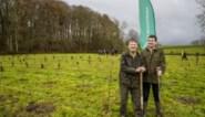 """Koppel krijgt hulp van vrijwilligers bij planten van 1.700 bomen """"We doen dit niet voor het geld, wel omdat bomen noodzakelijk zijn"""""""