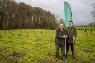 """Koppel krijgt hulp van vrijwilligers bij planten van 1.700 bomen: """"We doen dit niet voor het geld, wel omdat bomen noodzakelijk zijn"""""""