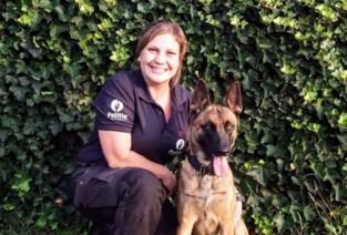 Nieuwe patrouillehond voor de politie Demerdal