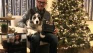"""Stefan maakt feestmaaltijd voor honden, met frietjes en bier: """"Zij voelen de kerstsfeer ook in de lucht"""""""