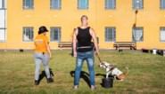 """Gedetineerden voelen zich beter en lastige asielhonden worden er kalmer van: """"Dit project is groot succes"""""""