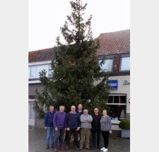Feestcomité haalt met negen meter zijn hoogste kerstboom ooit naar Poeke