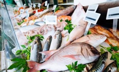 """Viswinkel verkoopt goedkopere koolvis als IJslandse kabeljauw: """"Verkeerde ticketje bij vis gelegd"""""""