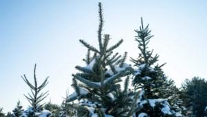 Krijgen we dit jaar een witte Kerst?