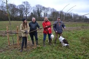 Voedselbos vervangt traditionele landbouwgrond op Putberg
